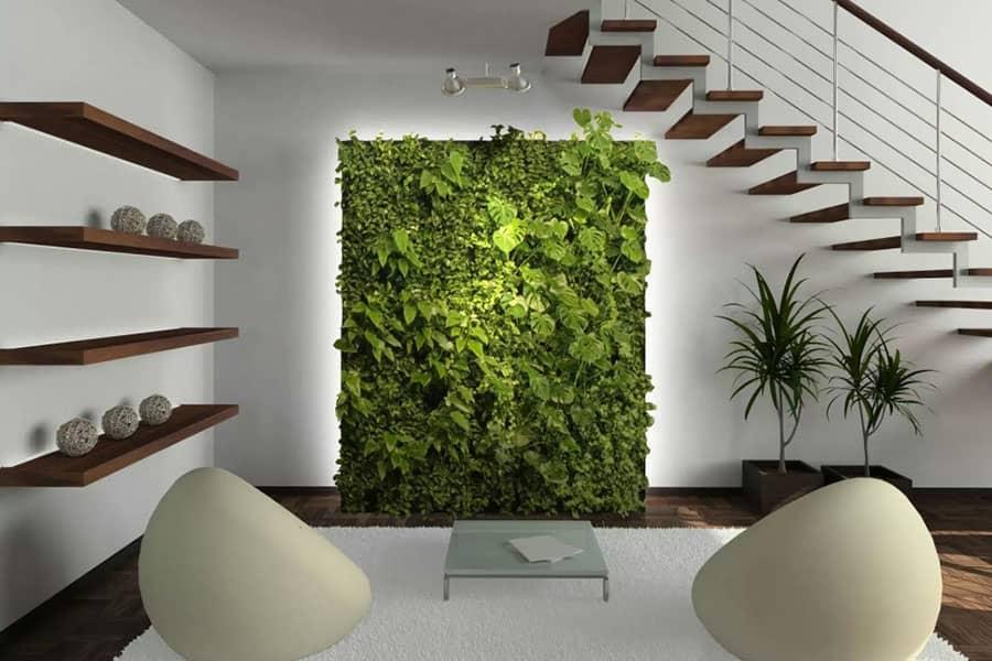 Az élő növények segítenek abban, hogy lendületet kapjon és a megfelelő módon hangoljon.