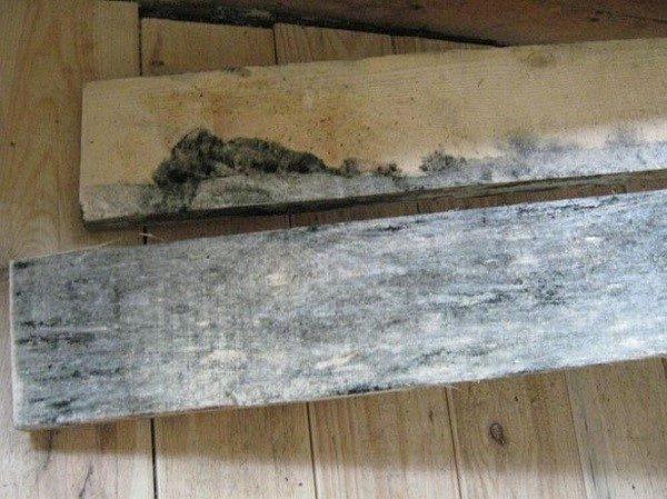Доски с плесенью, гнилью не подходят для создания мебели